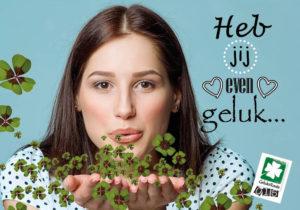 Geluksroute Delft Happy Matters